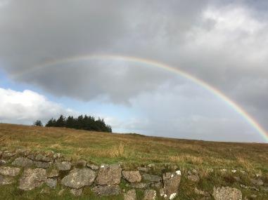 Regenbogen ueber Dartmoor