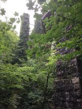 Säulen eines alten Viadukts in Ivybridge
