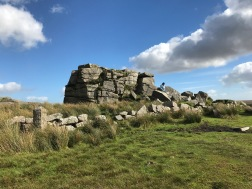 South Hessary Tor Dartmoor