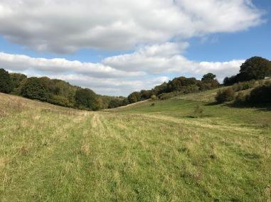 Die Northdowns auf einer Wanderung