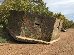 Pillbox in Bewegung