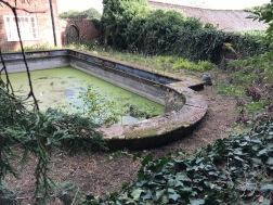 Ein verlassener Swimmingpool im Garten