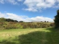 Wanderung auf den Northdowns